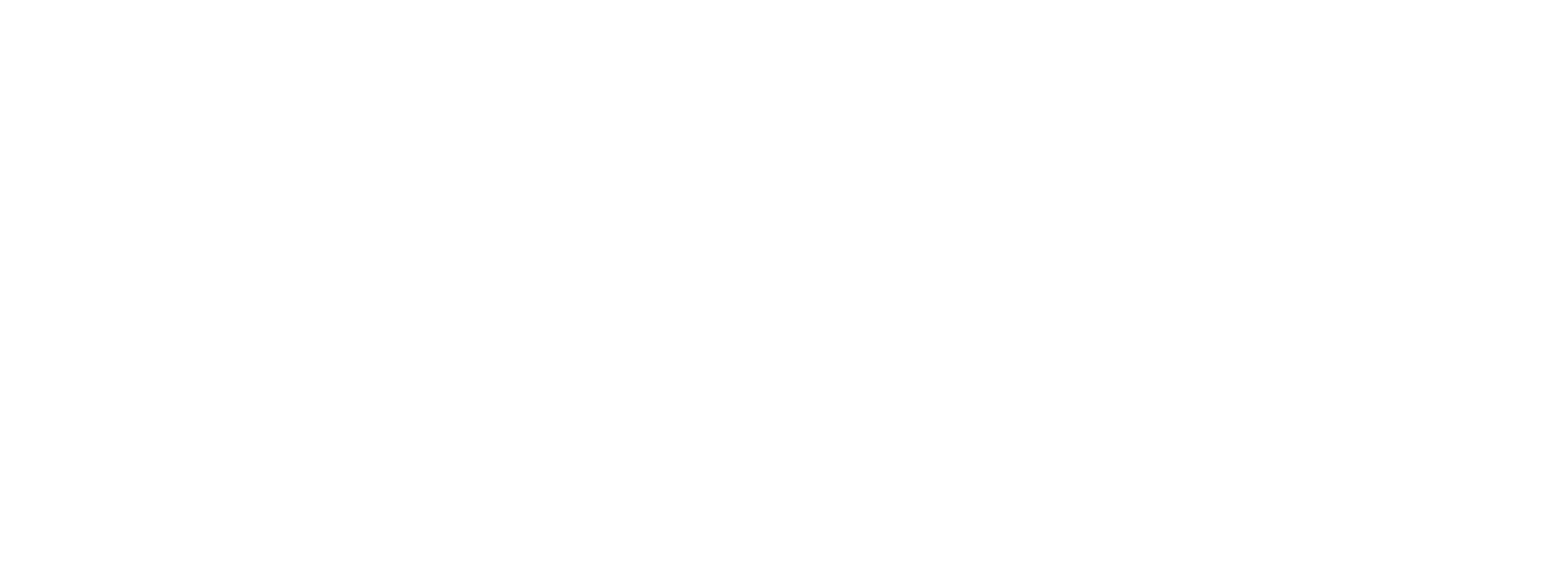 Strategic Partnership Institute